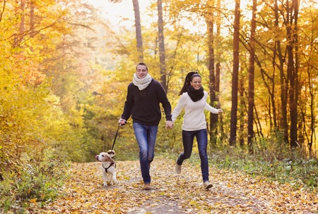 road to love: Beautiful young couple with dog in autumn forest Stock Photo