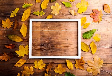 marco madera: Composición de la hoja del otoño con el marco de imagen. Estudio tirado en el fondo de madera.