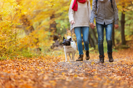 fleece: Beautiful young couple on a walk in autumn forest Stock Photo