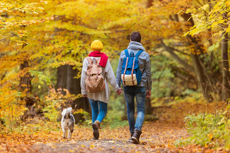 Beautiful young couple on a walk in autumn forest Stock Photo