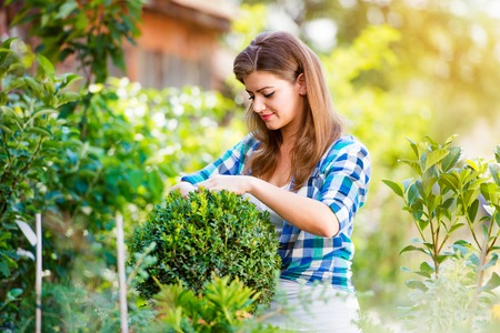 woman gardening: Beautiful young woman gardening outside in summer nature