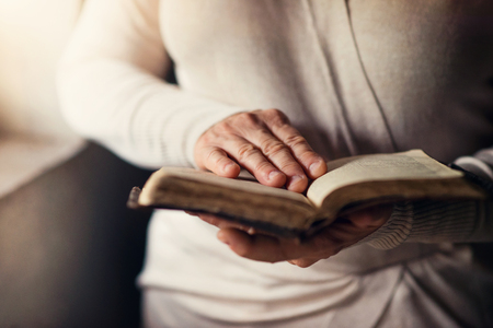 jesus praying: Unrecognizable woman holding a bible in her hands and praying