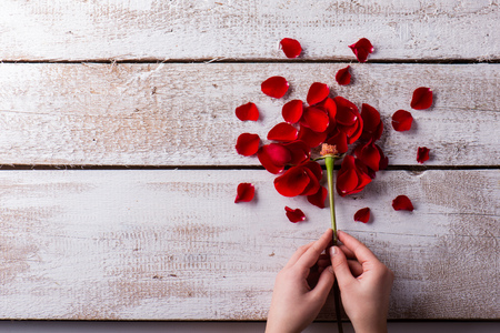 emty: Valentines day composition. Studio shot on white wooden background. Stock Photo