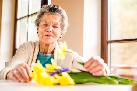 Senior woman sitting by the window and arranging bouquet of yellow daffodils