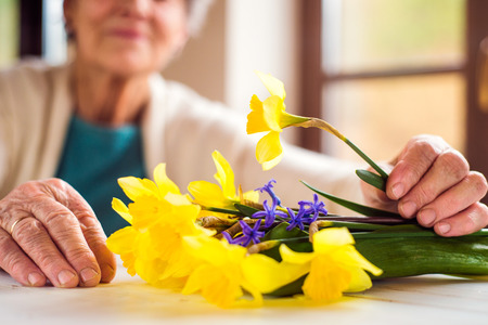 aging woman: Close up of unrecognizable senior woman sitting by the window and holding bouquet of yellow daffodils