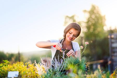 Young gardener cutting little flower plant, green sunny nature, spring garden Standard-Bild