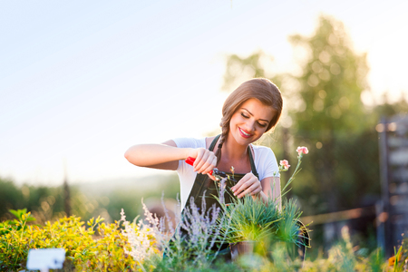 Young gardener cutting little flower plant, green sunny nature, spring garden Banco de Imagens