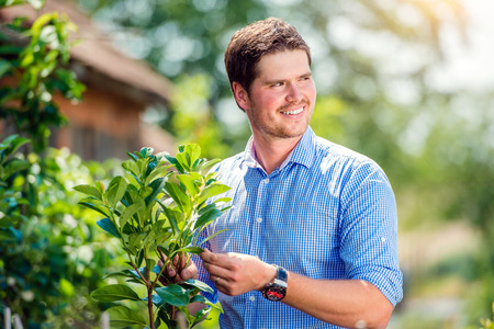 cut off: Handsome gardener with little tree against green sunny nature