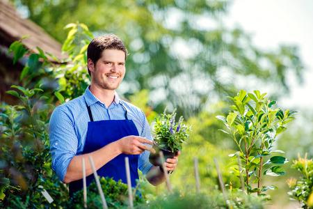flower pot: Gardener holding a plant in his garden, green sunny nature