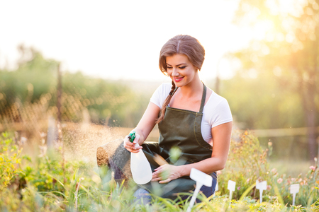 t shirt white: Young gardener in green apron sprinkling various plants in her garden, sunny summer nature