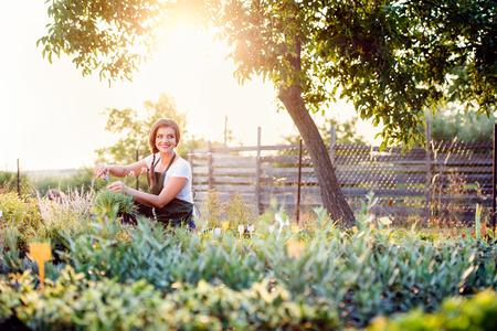 Young gardener cutting little flower plant, green sunny nature, spring garden Stock Photo
