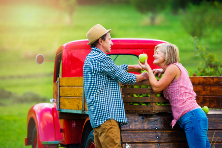 uomo rosso: Anziano frutta paio di raccolta, in piedi al rosso camioncino d'epoca, donna con mela