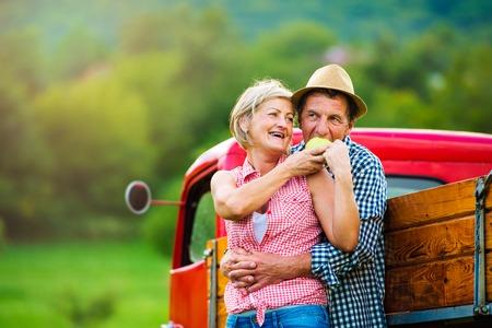 arboles frutales: Superior de frutas recolección de pareja, de pie en cosecha camioneta roja, la mujer que sostiene la manzana, el hombre de comerlo