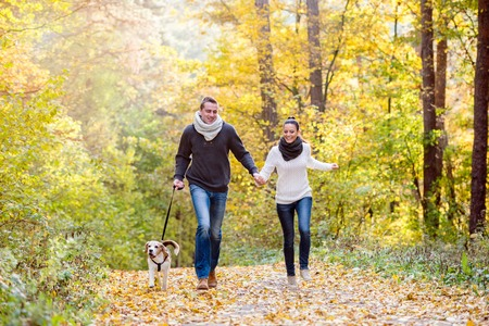 autumn young: Beautiful young couple with dog running in colorful sunny autumn forest Stock Photo