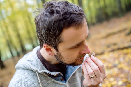 identifying: Young hipster man picking mushrooms in autumn forest, smelling it, identifying it Stock Photo