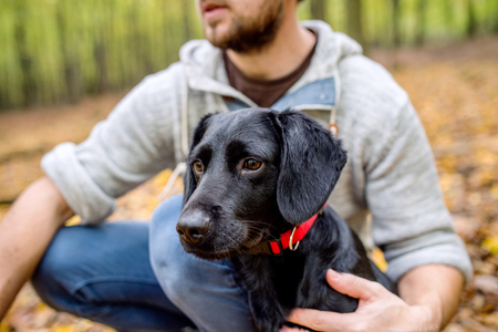 black dog: Unrecognizable young hipster man with his black dog in autumn forest