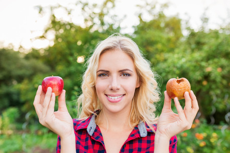 good shirt: Beautiful young blond woman in checked red shirt harvesting apples, holding in her hands one rotten and one good apple Stock Photo
