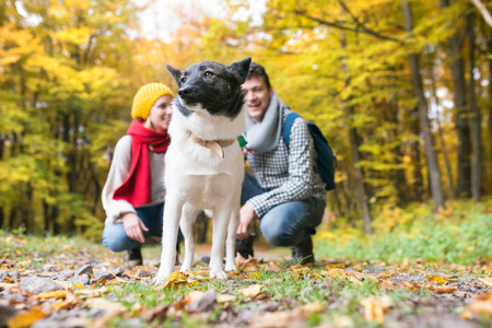 crouching: Beautiful couple with dog on a walk in colorful autumn forest, crouching.