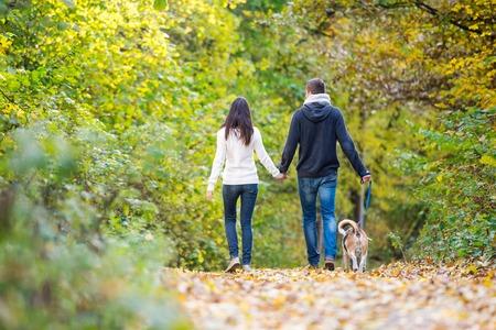 caminar: pareja joven hermosa con el perro en una caminata en el bosque de otoño soleado colorido, visión trasera Foto de archivo