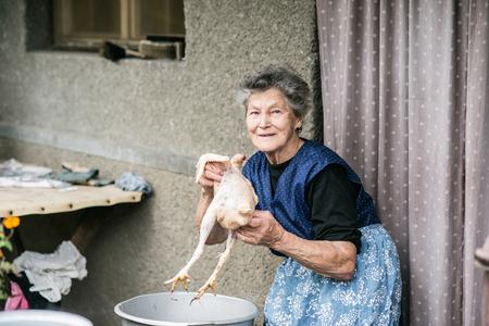 mandil: Mujer mayor, limpieza y lavado recién sacrificados fuera de pollo en frente de su casa.