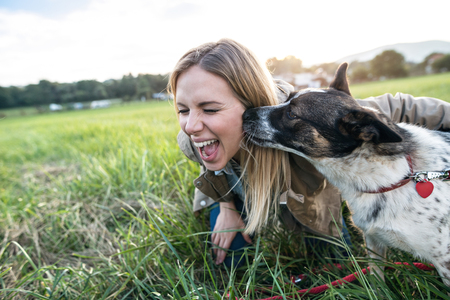Beautiful young woman on a walk with a dog in green sunny nature, dog licking her face