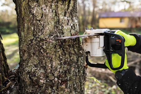 Handen van onherkenbare timmerhout met kettingzaag die een boom snijdt. Stockfoto