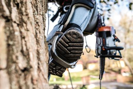 木に登ってチェーンソーで木こりの脚のクローズ アップ。 写真素材