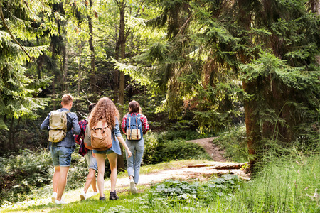 Teenagers with backpacks hiking in forest. Summer vacation. 版權商用圖片 - 85075341