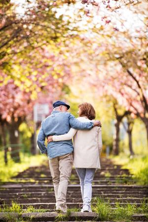 春の自然の中で外の愛で美しい先輩カップル。