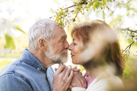 Senior couple in love outside in spring nature kissing. Stock Photo