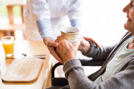 Unrecognizable health visitor and a senior woman during home vis