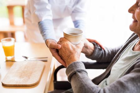 Salute Salute visitatore e una donna anziana durante la nascita della casa