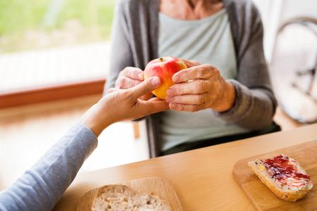 認識できない健康の訪問者とホームの vi の中に年配の女性