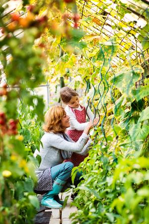 Hogere vrouw met kleindochter die in de binnenplaatstuin tuinieren.