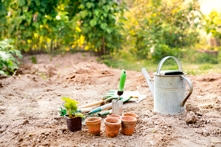 Garden tools, flower pots and watering can in the garden. Stock Photo