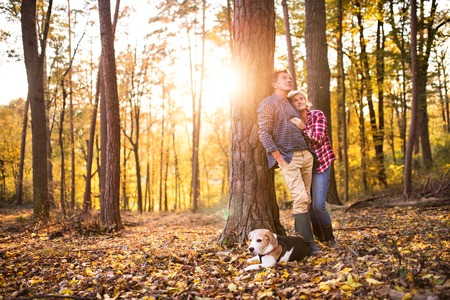 Senior couple with dog on a walk in an autumn forest.