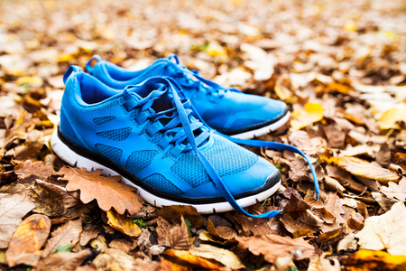 Blue trainers on colorful leaves on the ground. Stock fotó