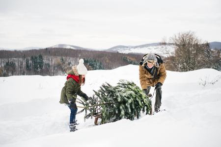 森の中でクリスマスツリーを手に入れたおじいちゃんと小さな女の子。