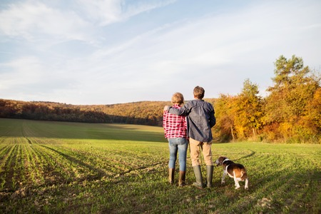 Active senior couple with dog on a walk in a beautiful autumn nature. Rear view. Stock Photo