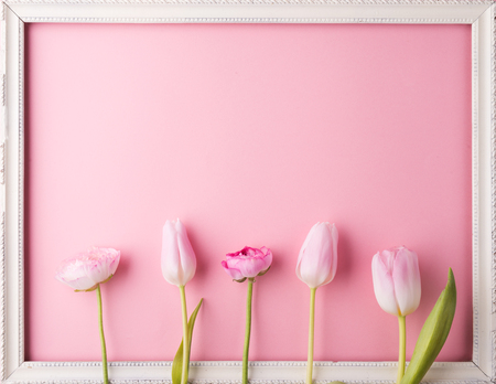 Pink flowers on a pink background. Stock Photo - 96908318