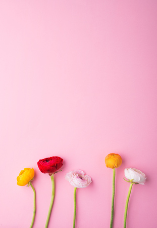 Easter and spring flat lay on a pink bacground. Banque d'images
