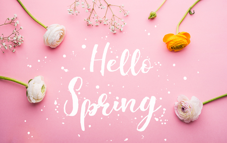 Hello spring phrase and flowers flat lay on a pink bacground.