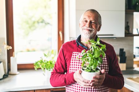 Senior man preparing food in the kitchen.