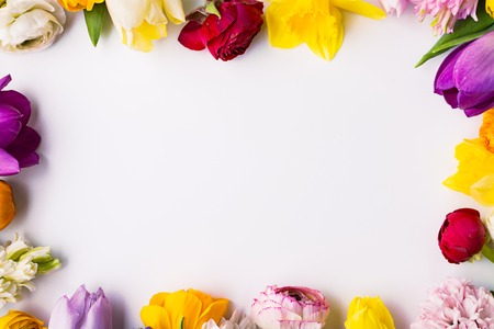 Flowers on a white background. Flat lay. Copy space.