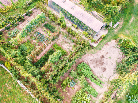 An aerial view of an allotment.