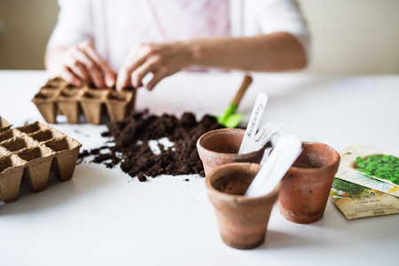 Young woman planting seeds at home. Stock Photo