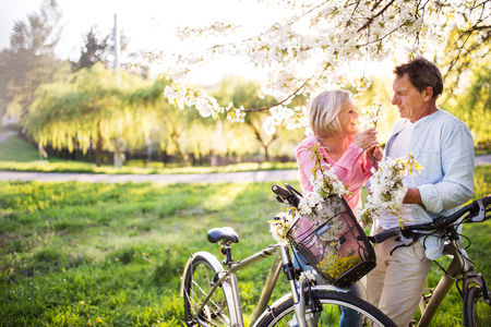 Beautiful senior couple with bicycles outside in spring nature. Stock Photo