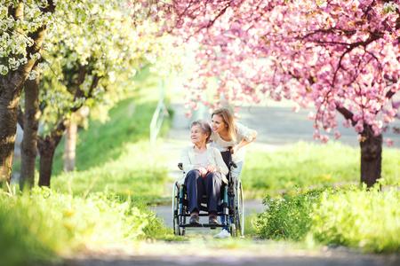 Elderly grandmother in wheelchair with granddaughter in spring nature. Standard-Bild