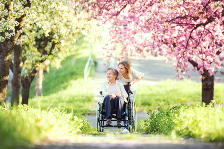 Elderly grandmother in wheelchair with granddaughter in spring nature. 免版税图像