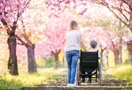 Elderly grandmother in wheelchair with granddaughter in spring nature. 스톡 콘텐츠 - 100624603